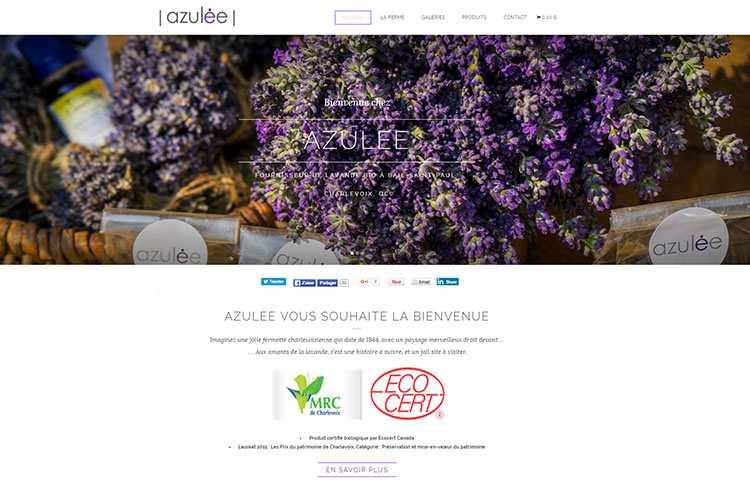 azulee-enovweb-creation-site-internet-et-hebergement-dedie